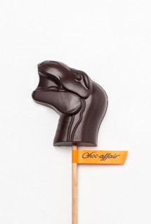 dinosaur chocolate lolly
