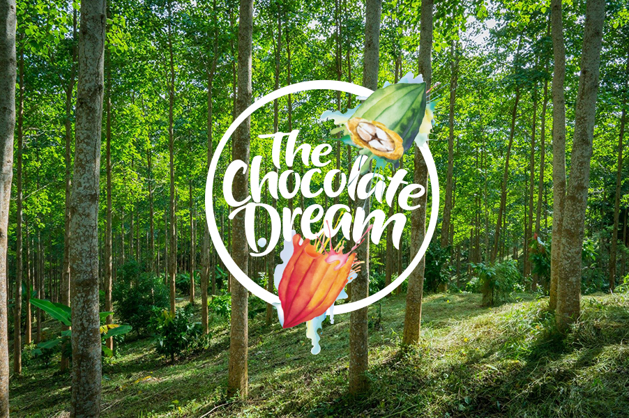 The Chocolate Dream